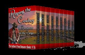 rb4u-cowboy-3d1